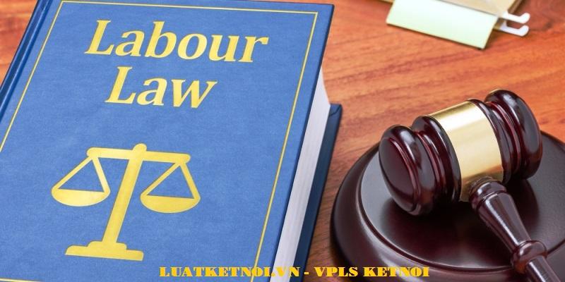 Luật sư tư vấn Luật lao động